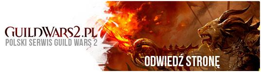 Gra tygodnia: Guild Wars 2 - obrazek 2