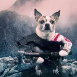 A co by było gdyby Kratos z God of War był... psem?