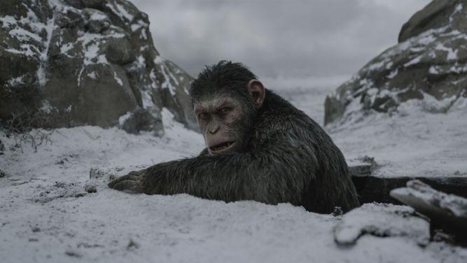 Wojna o planetę małp - twórcy gry na podstawie filmu pozywają Fox - obrazek 1