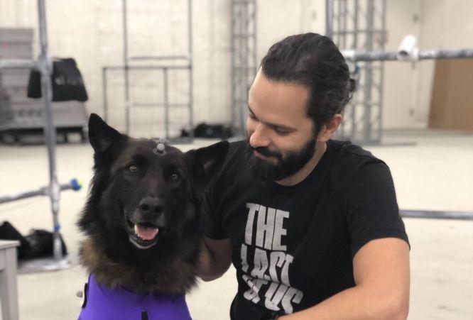 W The Last of Us 2 naszym kompanem będzie pies? - obrazek 1